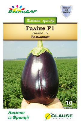 Фото-семена Баклажаны Галине F1