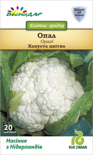 Фото-семена Капуста Опал
