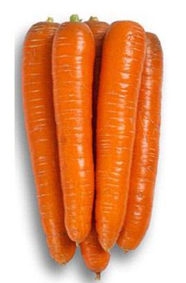Фото-семена Морковь Абако (Abaco) F1