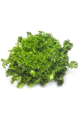 Фото-семена салат Сигал (Cigal RZ) драж.