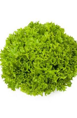 Фото-семена салат Экзакт (Exact RZ)