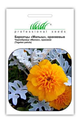 Фото-семена Бархатцы Малыш оранжевые