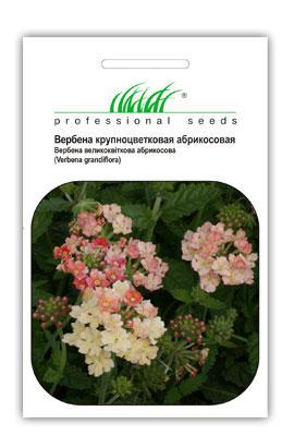Фото-семена Вербена гибридная Aбрикосовая