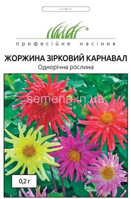 Фото-семена Георгина Звездный карнавал