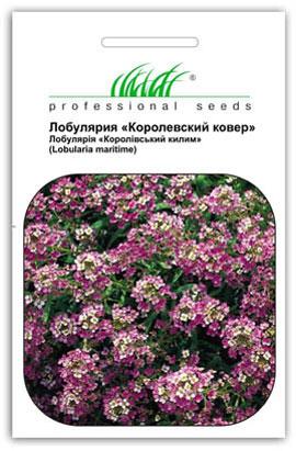 Фото-семена Алиссум(Лобулярия) Королевский ковер, смесь