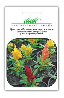 Фото-семена Целозия Пампаское перо