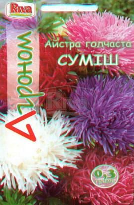 Фото-семена Астра игольчатая Смесь