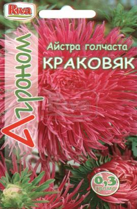 Фото-семена Астра игольчатая Краковяк