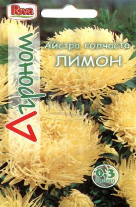 Фото-семена Астра игольчатая Лимон