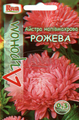 Фото-семена Астра полумахровая Розовая