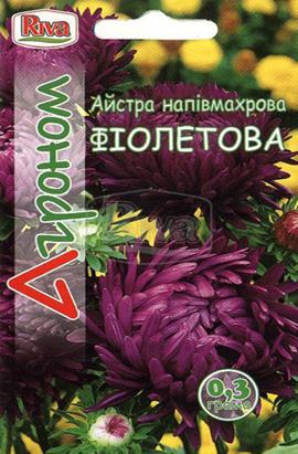 Фото-семена Астра полумахровая Фиолетовая