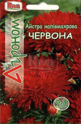 Фото-семена Астра полумахровая Красная