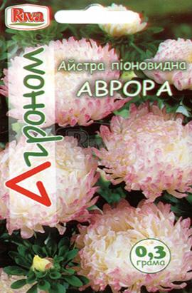 Фото-семена Астра Аврора
