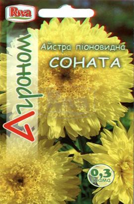Фото-семена Астра пионовидная Соната