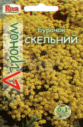 Фото-семена Алиссум Скальный
