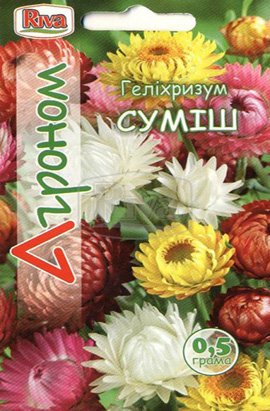 Фото-семена Гелихризум Смесь