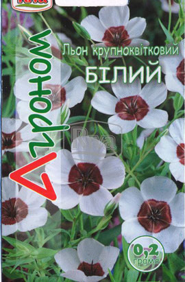 Фото-семена Лен крупноцветковый БЕЛЫЙ
