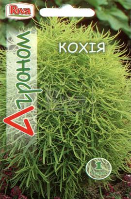 Фото-семена Кохия Ползучая, смесь