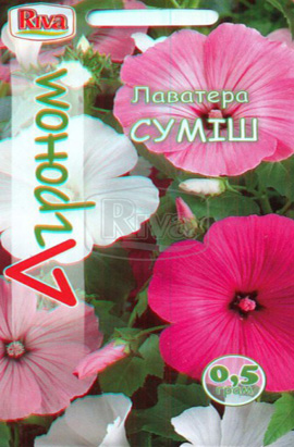 Фото-семена Лаватера Смесь