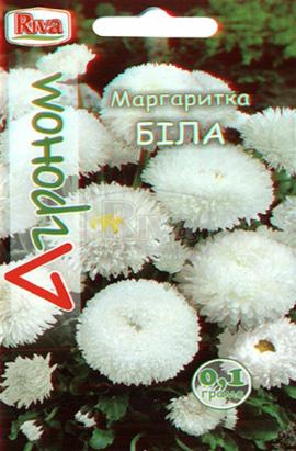 Фото-семена Маргаритка Белая