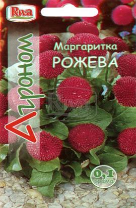 Фото-семена Маргаритка Розовая