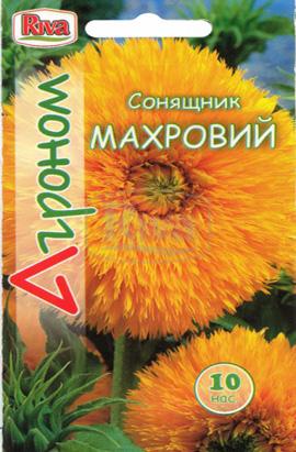 Фото-семена Подсолнух Махровый