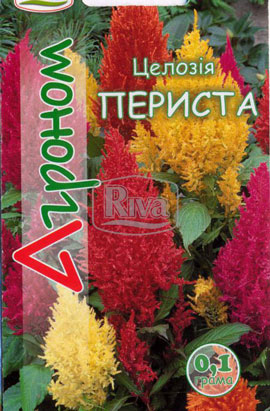 Фото-семена Целозия периста Смесь
