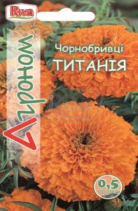 Фото-семена Бархатцы Титания