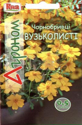 Фото-семена Бархатцы Узколистые