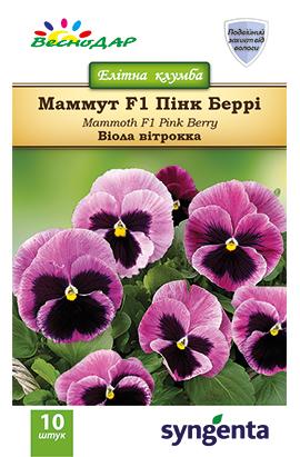 Фото-семена Виола витрокка Mammoth F1  Pink Berri