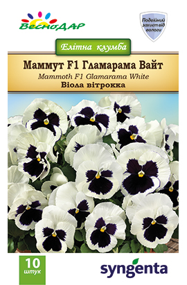 Фото-семена Виола витрокка Mammoth F1 Glamarama White
