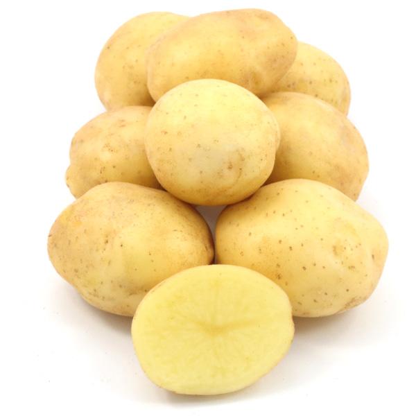 Семенной картофель  Ривьера (І репродукция)