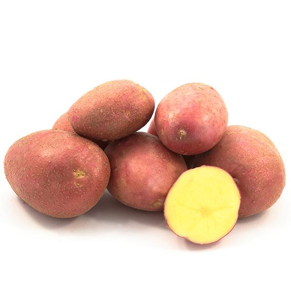 Фото- Семенной картофель Лабелла(Labella) (І репродукция)